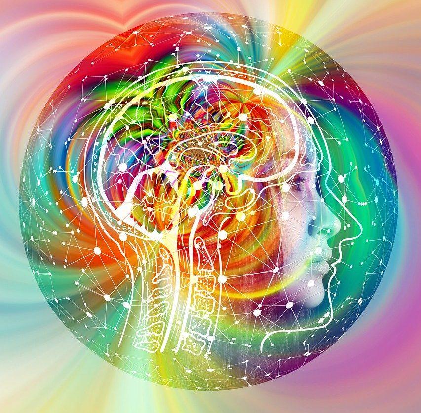Das Chaos im Pubertierenden Gehirn