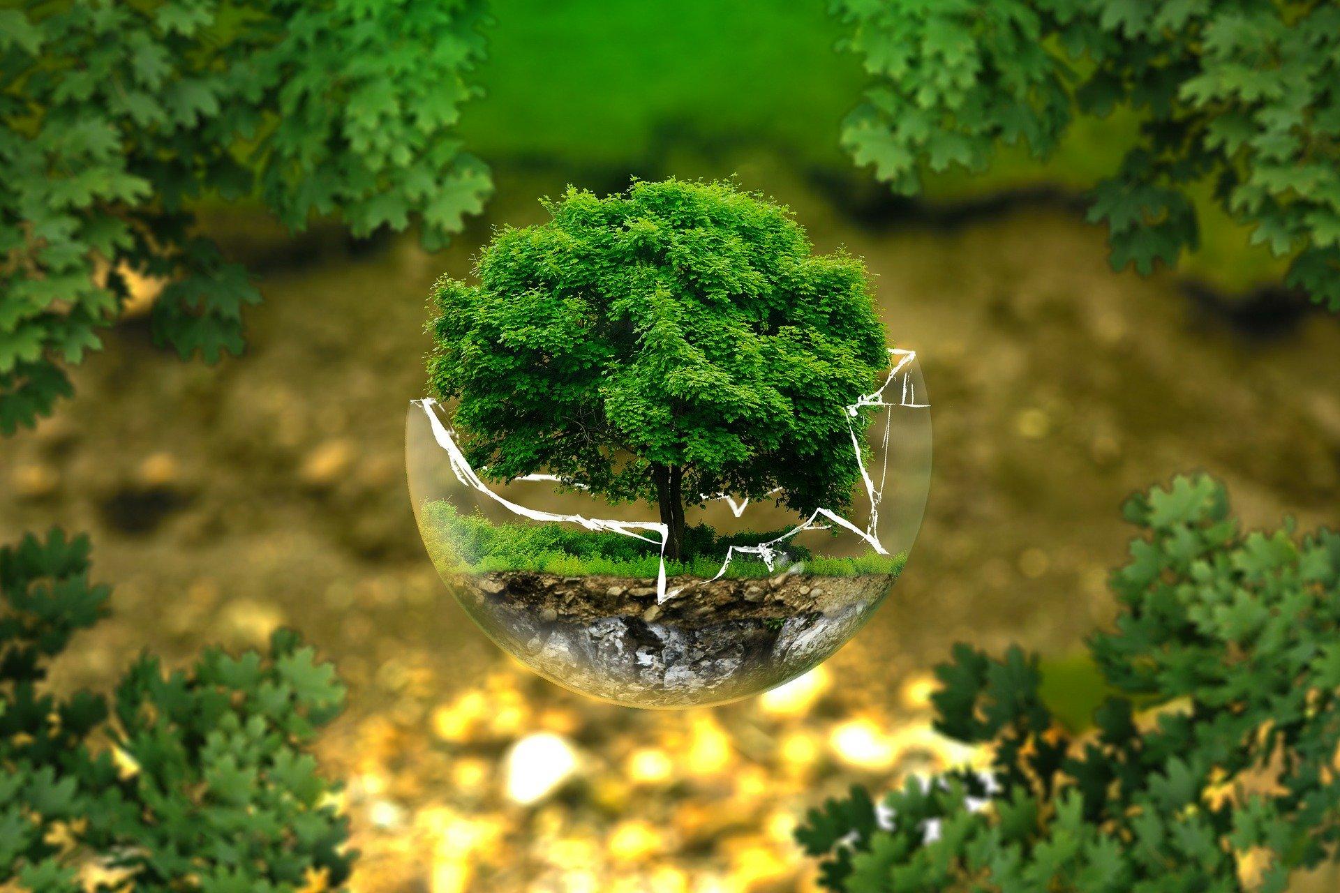 Negative Gedanken unterbrechen - Achtsamkeit - Erden im Hier und Jetzt